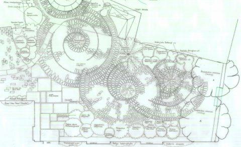 Cornish Tudor Farmhouse Courtyard Garden Plan
